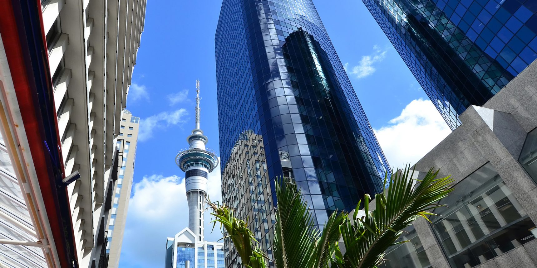 Virtue Consulting - financial services recruitment - auckland jobs